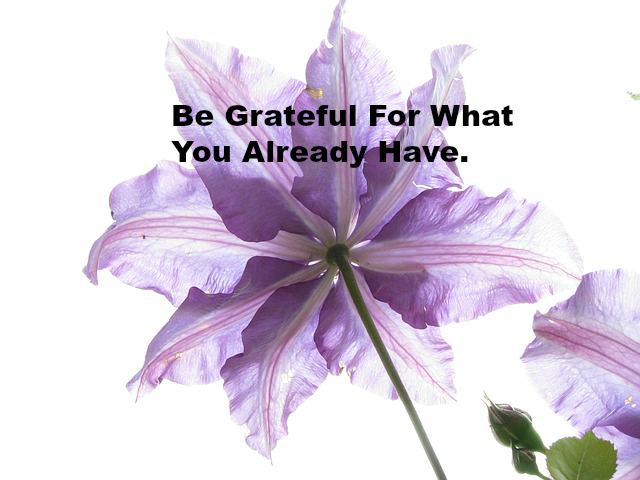 Be Grateful For What you Already Have.