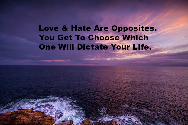 Love & Hate Are Opposites. You Get To Choose Which One Will Dictate Your LIfe.