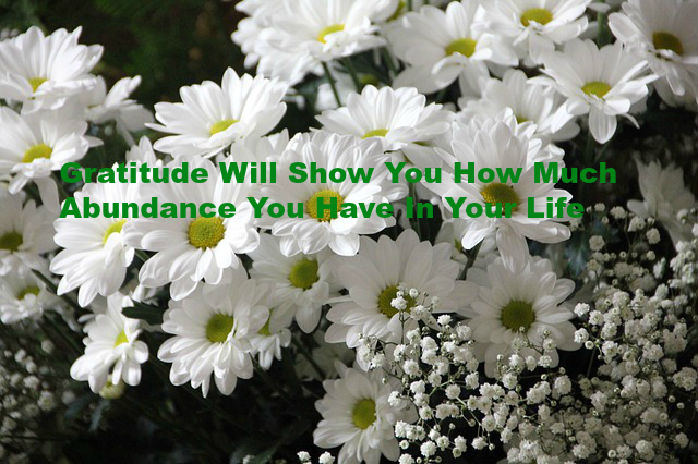 Gratitude Will Show You How Much Abundance You Have In Your Life