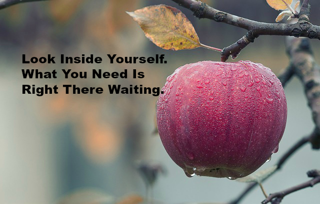 Look Inside Yourself. What You Need Is Right There Waiting.