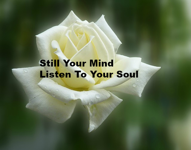 Still Your Mind Listen To Your Soul