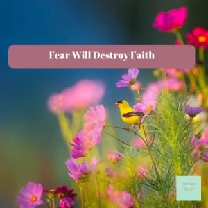 Fear Will Destroy Faith
