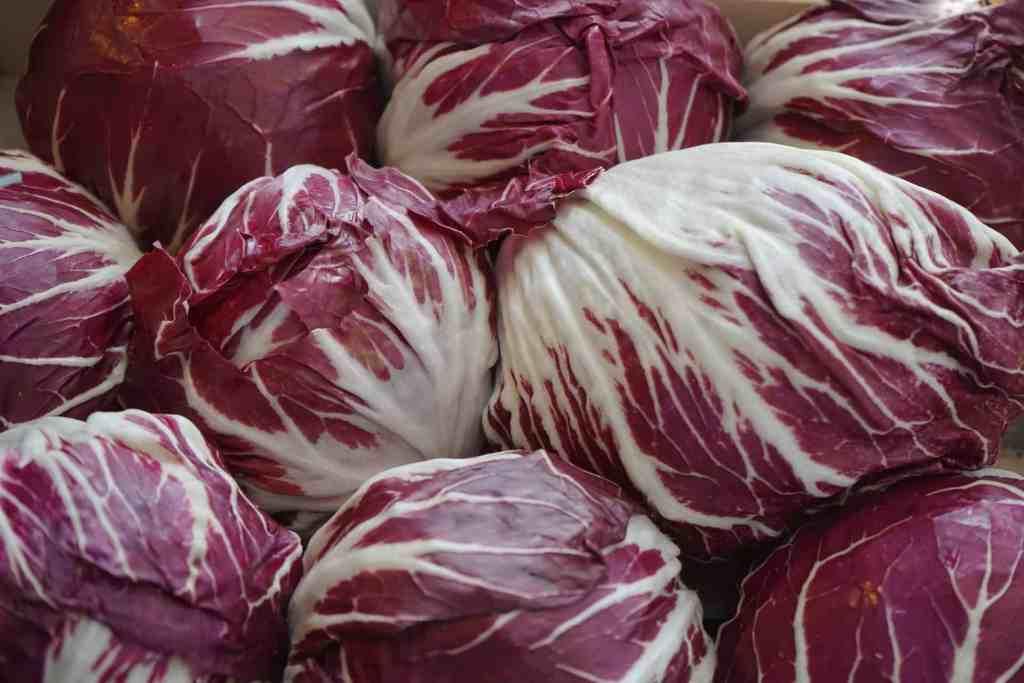 frutta-e-verdura-gennaio-deborah-fedele-radicchio
