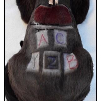 Deborah Hansen, CFMG, CFCG beginner creative cat grooming class.