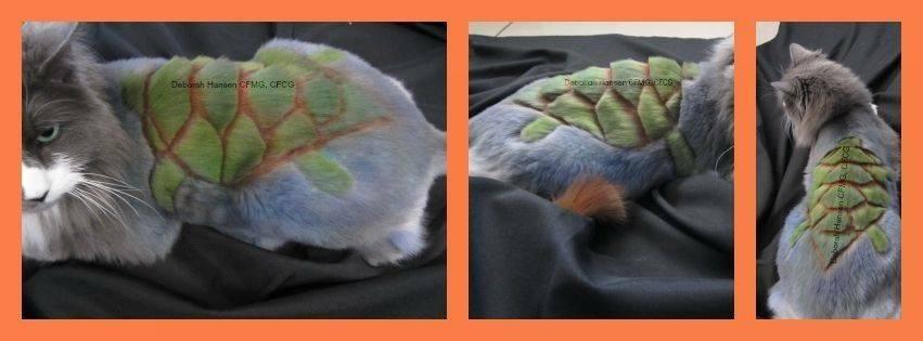 Sea Turtle, by Deborah Hansen, CFMG, CFCG, creative cat grooming