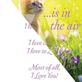 Kitty's Kopy Kats Valentine Day Cards for Cat Grooming Clients