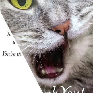 Kitty's Kopy Kats has Thank You Cards for Cat Grooming Clients.