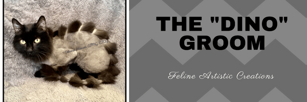 Deborah Hansen, CFMG, CFCG teaches The Dino Groom Class.