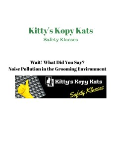 Kitty's Kopy Kats safety class for groomers, hearing