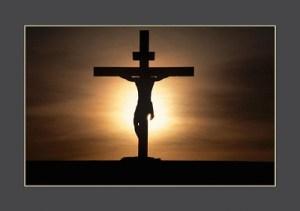 Cross2-50
