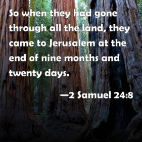 2 samuel 24-8