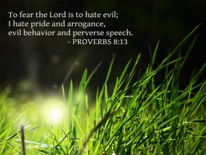 Proverbs 8 fear-the-lord