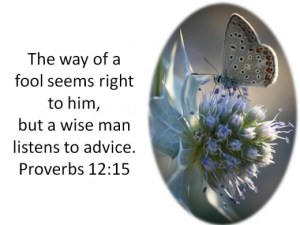Proverbs 12 The Wise Listen to Advice