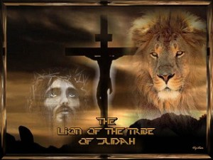 lion_of_judah-50