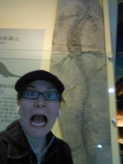 Fun fossils at the natural history museum!
