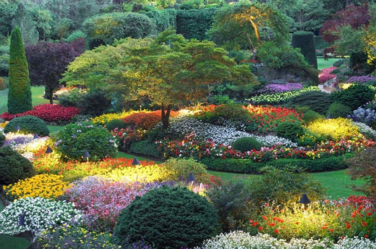 Garden Theory in a Nut Shell (or an Acorn)   Deborah Ashway on Beautiful Backyard  id=38102