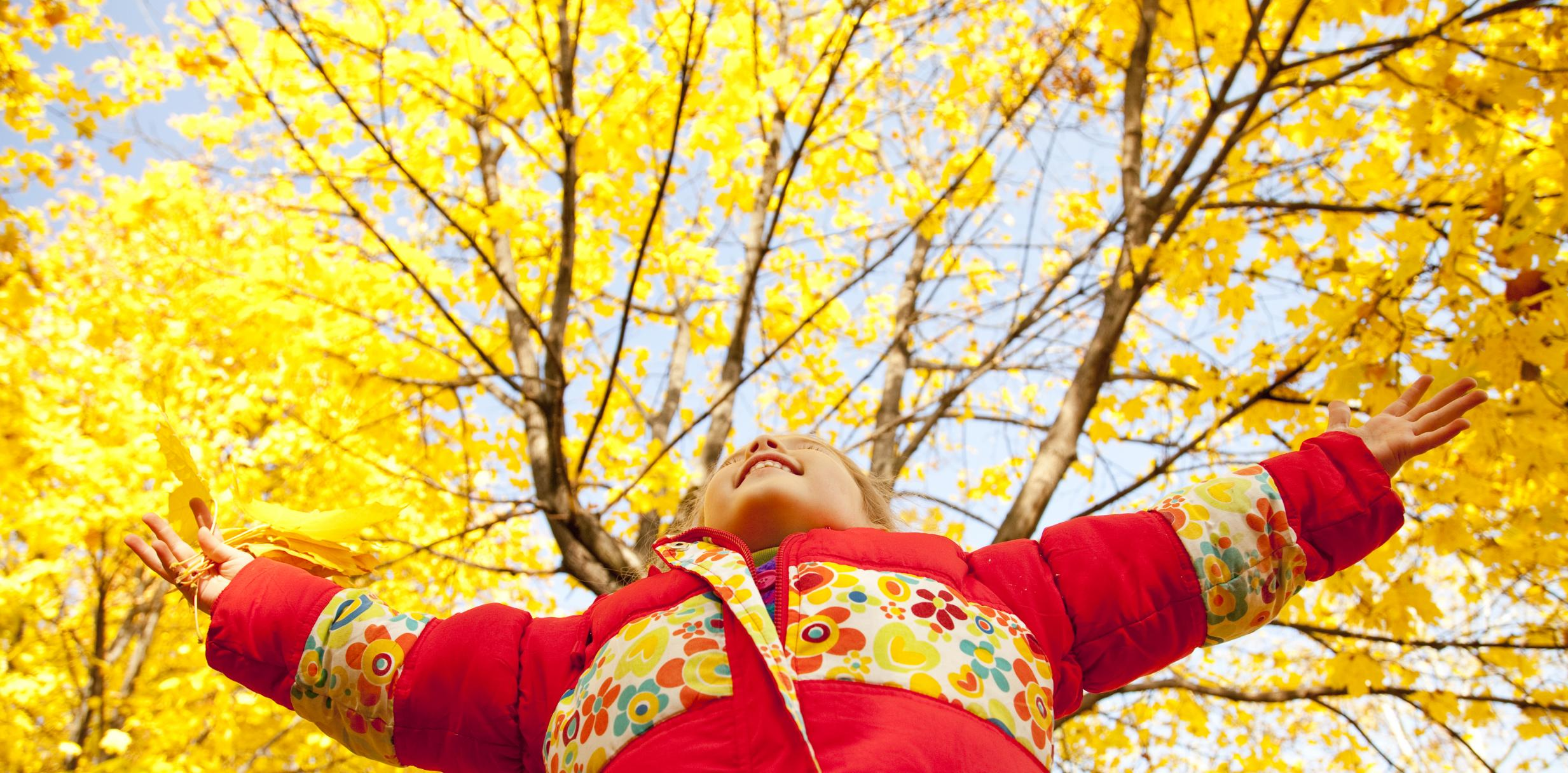 autumn-activities