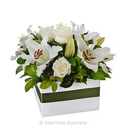 HARMONY Elegant large box arrangment AUS 711