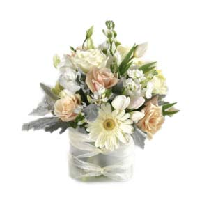 soft and subtle flowers