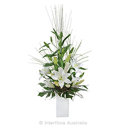 TRANQUILITY Elegant arrangement of oriental lilies in ceramic container suitable for home or service AUS 828
