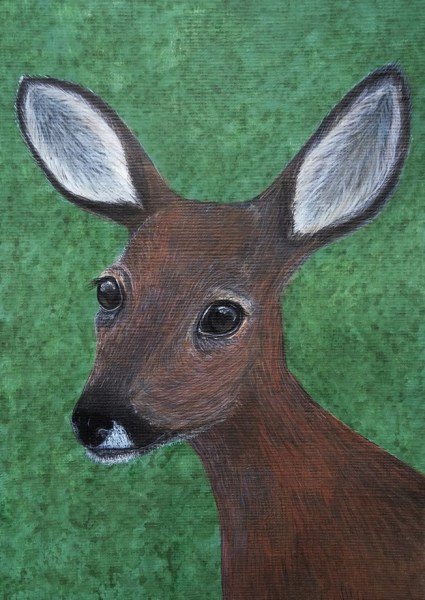 Roe Deer - Wonder of Wild Creatures