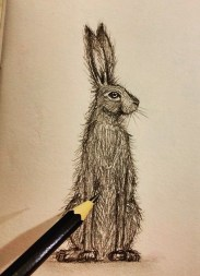 Hare doodle