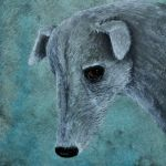 Galgo Spanish Greyhound painting