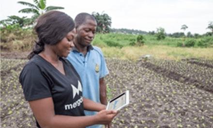 Farmerline,  un outil pour les femmes rurales