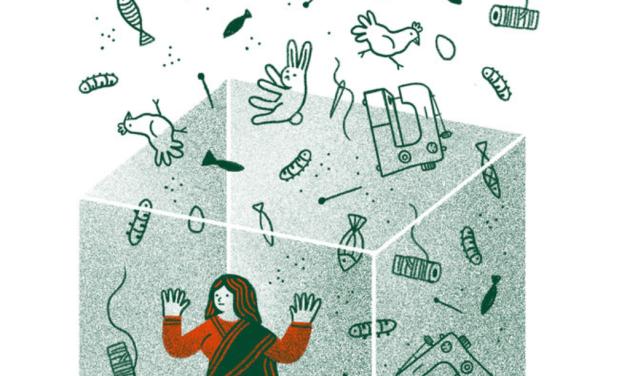 Le mythe de l'autonomisation des femmes