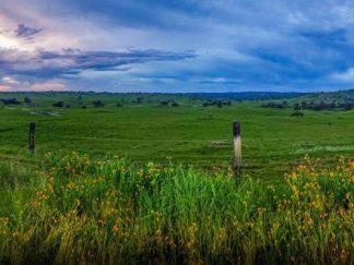 flint hills great plains wall art prairie sunset