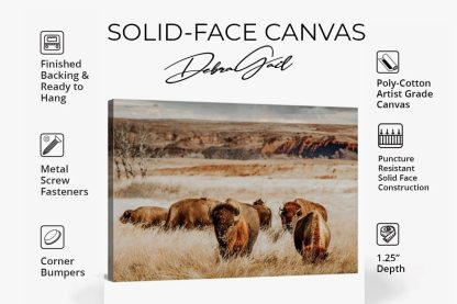 solid face canvas product info sheet