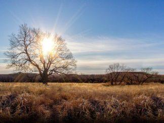 winter sunrays flint hills photography debra gail
