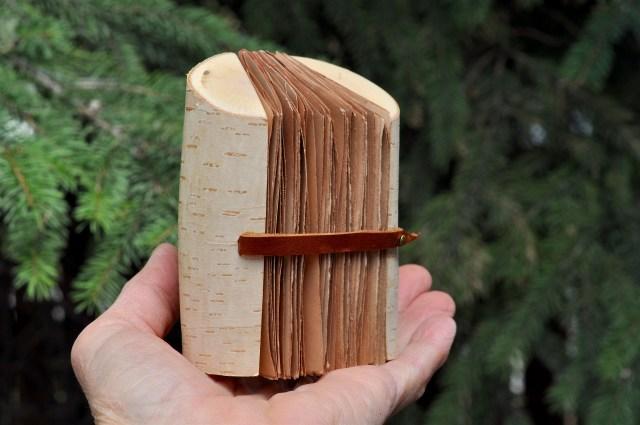 birch standing on hand