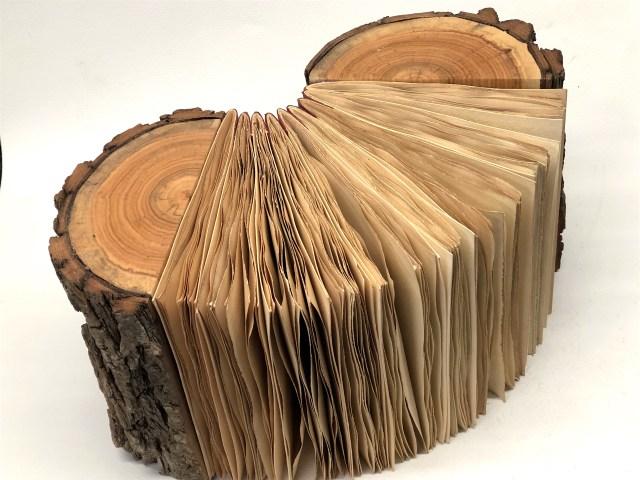 Log book 4