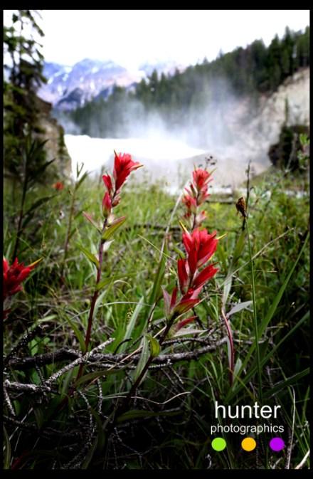 Wapta Falls, British Columbia, Canada