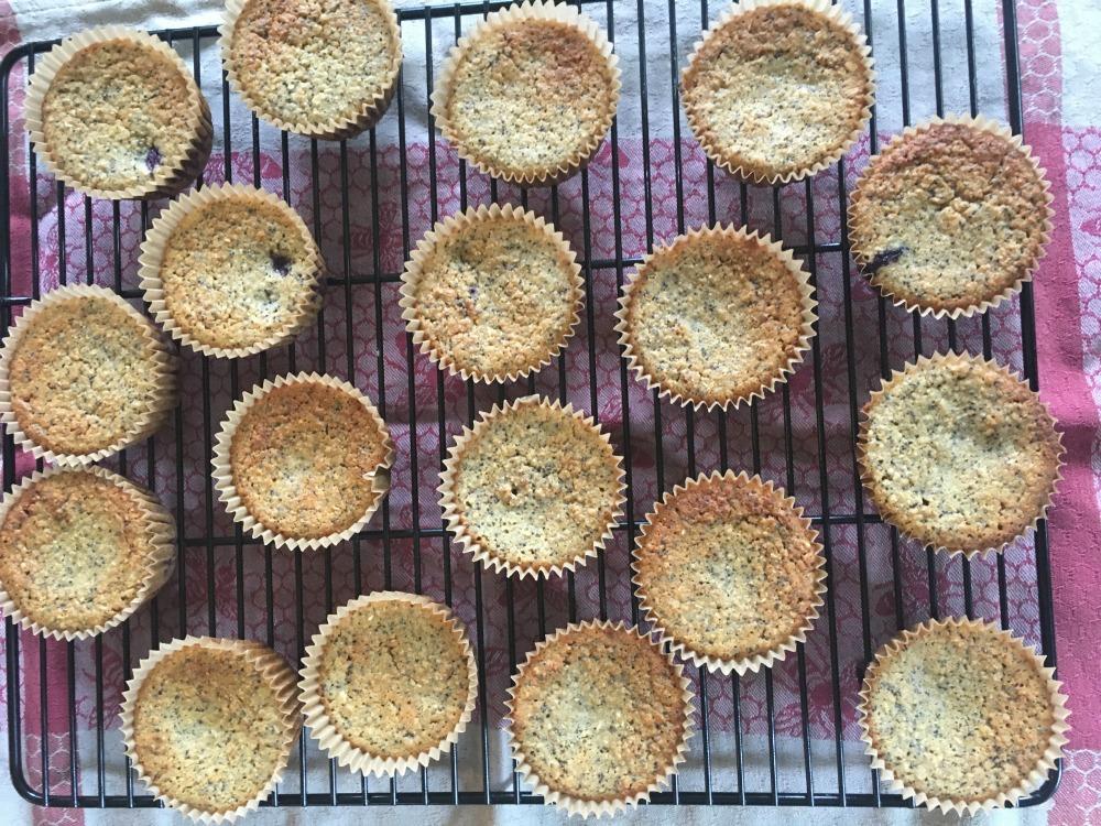 Glutenfree Healthy Muffins
