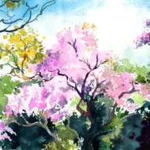 Wisteria Hysteria - wisteria watercolour painting by Debra Wenlock