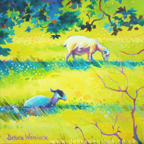 Light and Shade the Sunshine Sheep painting in acrylic by Debra Wenlock