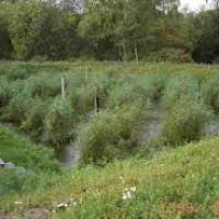 Alternatív szennyvíztisztítási megoldások II.
