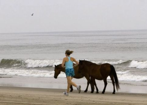 BeachDebHorsesRunning