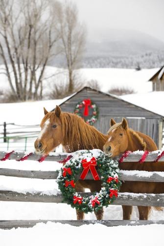 HorsesAndWreath