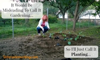 It Would Be Misleading To Call It Gardening…
