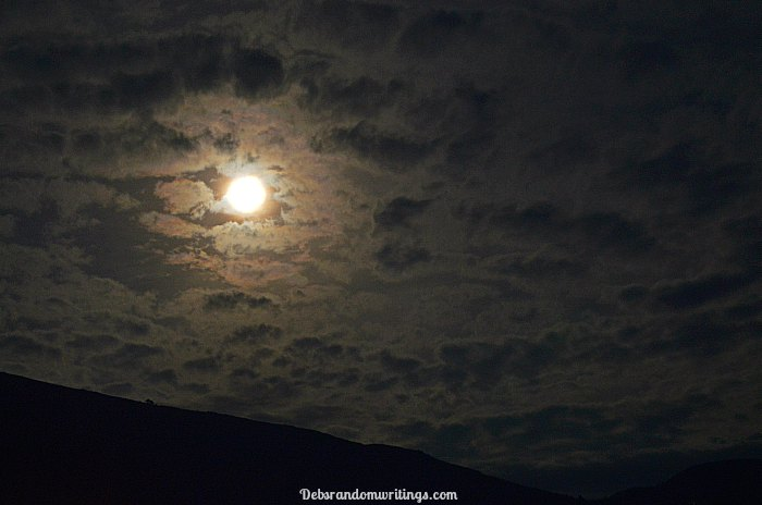 nov-15th-super-moon-through-my-lens-5