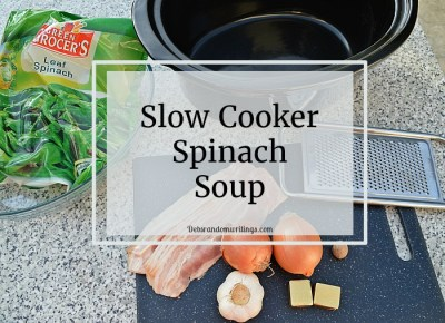 slow cooker spinach soup