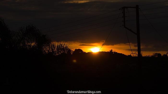 festive sunrise