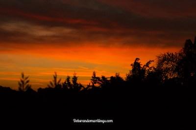 stunning dawn