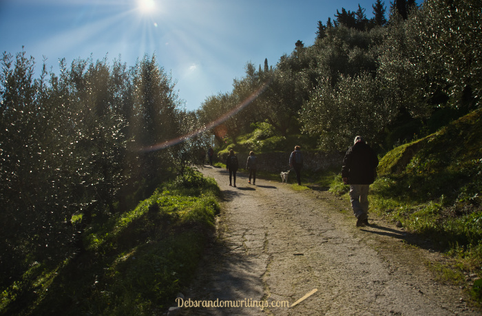 The start of our walk around Lagadakia. It may only have been February, but spring was in the air.