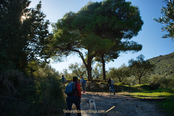 You can't walk on Zakynthos without a short hill or two, but they don't have to be too steep.