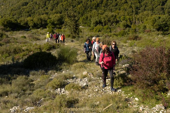 Hikers trekking up a green hill