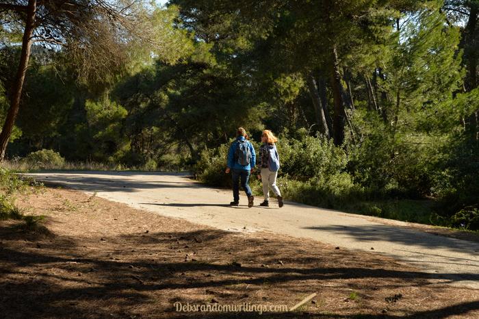Two women walking on a tree lines trail.
